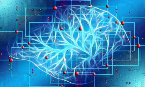 Memorization in Deep Learning